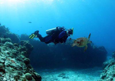 Master Scuba Diver mistrz nurkowania MSD master scuba diver